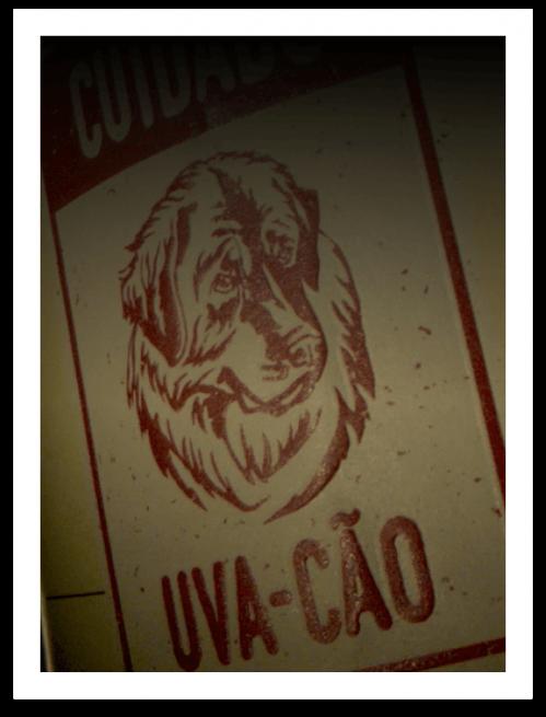 Uva-Cão